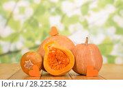 Two large gourd, half gourd with seeds, little hearts pumpkin, on table. Стоковое фото, фотограф Сергей Молодиков / Фотобанк Лори