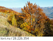 Купить «Autumn Carpathian mountain, Rakhiv, Ukraine», фото № 28226354, снято 18 октября 2017 г. (c) Юрий Брыкайло / Фотобанк Лори