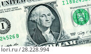 Купить «George Washington portrait from one dollars banknote», фото № 28228994, снято 19 августа 2018 г. (c) FotograFF / Фотобанк Лори