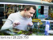 Купить «Customer buying tropical fish», фото № 28229750, снято 12 ноября 2019 г. (c) Яков Филимонов / Фотобанк Лори