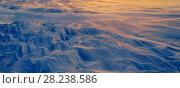 Купить «Snow drift, Adventdalen, Svalbard, Norway, January 2014.», фото № 28238586, снято 20 июля 2018 г. (c) Nature Picture Library / Фотобанк Лори