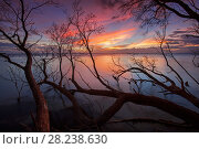 Купить «Sunset at Cabo Rojo Pedernales, Domincan Republic», фото № 28238630, снято 25 мая 2018 г. (c) Nature Picture Library / Фотобанк Лори