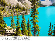Купить «Moraine Lake, Banff National Park, Alberta, Canada, August 2012.», фото № 28238662, снято 31 мая 2020 г. (c) Nature Picture Library / Фотобанк Лори