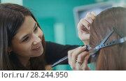 Купить «Professional visage artist doing evening make-up for model», фото № 28244950, снято 15 августа 2018 г. (c) Константин Шишкин / Фотобанк Лори