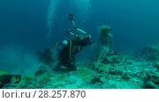 Купить «Professional underwater photographer prepares model for photo shoot in Indian Ocean», видеоролик № 28257870, снято 29 октября 2017 г. (c) Некрасов Андрей / Фотобанк Лори