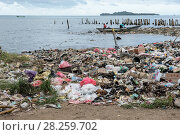 Купить «Marine pollution on beach near Sorong Fish Market, Bos Wesen Market, Sorong, West Papua, Indonesia», фото № 28259702, снято 2 июня 2020 г. (c) Nature Picture Library / Фотобанк Лори