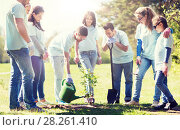 Купить «group of volunteers planting and watering tree», фото № 28261410, снято 7 мая 2016 г. (c) Syda Productions / Фотобанк Лори