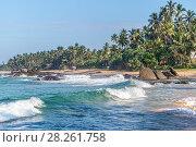 Купить «Штормовые волны набегают на пустынный тропический песчаный пляж. Амбалангода, Шри-Ланка», фото № 28261758, снято 5 февраля 2018 г. (c) Владимир Сергеев / Фотобанк Лори