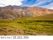 Купить «View of Andes mountains, Valle Hermoso», фото № 28262366, снято 9 февраля 2017 г. (c) Яков Филимонов / Фотобанк Лори
