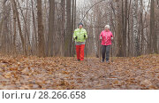 Купить «Two senior women in autumn park have nordic walking among autumn cold park - rear view», фото № 28266658, снято 23 июля 2019 г. (c) Константин Шишкин / Фотобанк Лори