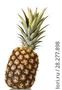 Купить «Large pineapple with crown of leaves isolated on white», фото № 28277898, снято 22 декабря 2017 г. (c) Сергей Молодиков / Фотобанк Лори