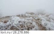 Купить «Movement on a grassy mountain slope», видеоролик № 28278886, снято 27 марта 2018 г. (c) Андрей Радченко / Фотобанк Лори