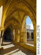 Купить «Courtyard of Cathedral of Saint Nazaire, Beziers», фото № 28280278, снято 1 декабря 2017 г. (c) Яков Филимонов / Фотобанк Лори