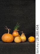 Купить «Натюрморт с несколькими тыквами и проросшим луком», фото № 28280434, снято 9 апреля 2018 г. (c) V.Ivantsov / Фотобанк Лори