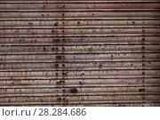 Купить «Rusty metal texture», фото № 28284686, снято 23 октября 2018 г. (c) Яков Филимонов / Фотобанк Лори