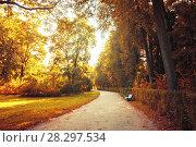 Купить «Осенний пейзаж в винтажных тонах. Осенний парк солнечным вечером», фото № 28297534, снято 21 сентября 2017 г. (c) Зезелина Марина / Фотобанк Лори