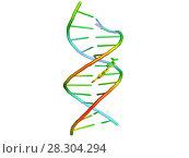 Купить «3D модель ДНК с лигандом», иллюстрация № 28304294 (c) Сергей Дрозд / Фотобанк Лори