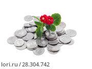 Купить «Денежное плодородие. Цветущий каланхоэ и много монет на белом фоне», фото № 28304742, снято 11 апреля 2018 г. (c) Наталья Осипова / Фотобанк Лори