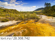Colourful silica terrace formed by hot water algae growing in the geothermal area of Orakei Korako (The Hidden Valley), Northern Island, New Zealand. Стоковое фото, агентство BE&W Photo / Фотобанк Лори