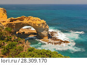 Купить «The Arch rock formation in Port Campbell National Park off the Great Ocean Road in Victoria, Australia», фото № 28309170, снято 16 января 2019 г. (c) BE&W Photo / Фотобанк Лори