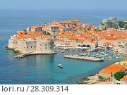 Купить «Aerial view of the walled city of Dubrovnik surrounded by the calm waters of the Adriatic Sea, Croatia», фото № 28309314, снято 17 октября 2018 г. (c) BE&W Photo / Фотобанк Лори