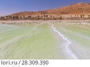 Dead Sea coastline with white salt and mountains in Ein Bokek, Israel. Стоковое фото, агентство BE&W Photo / Фотобанк Лори