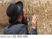 Купить «Orthodox Jewish man praying inside the synagogue at the Western Wall (Wailing Wall) in Jewish Quarter, Old City, Jerusalem, Israel», фото № 28309486, снято 24 апреля 2018 г. (c) BE&W Photo / Фотобанк Лори