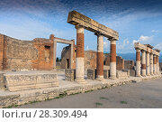 Купить «Stone and brick columns in The Forum in the archaeological excavations of Roman Pompeii near Naples, Campania, Italy», фото № 28309494, снято 16 июня 2019 г. (c) BE&W Photo / Фотобанк Лори