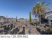 Купить «The ruins in the small town Capernaum on the coast of the lake of Galilee. According to the bible this is the place where Jesus lived, Israel.», фото № 28309662, снято 17 августа 2018 г. (c) BE&W Photo / Фотобанк Лори