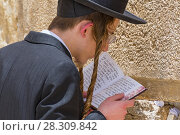 Купить «Religious orthodox jew praying at the Western wall in Jerusalem old city, Israel», фото № 28309842, снято 23 января 2019 г. (c) BE&W Photo / Фотобанк Лори