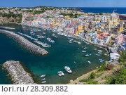 Купить «Marina della Corricella, fishermen's village on the island of Procida near Naples, Italy», фото № 28309882, снято 21 марта 2019 г. (c) BE&W Photo / Фотобанк Лори