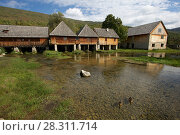 Купить «Spring of the Gacka River, with renovated mills, Croatia, October 2012. Photographed for The Freshwater Project», фото № 28311714, снято 27 апреля 2018 г. (c) Nature Picture Library / Фотобанк Лори