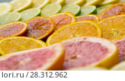 Купить «close up of grapefruit, orange, lemon and lime», видеоролик № 28312962, снято 10 апреля 2018 г. (c) Syda Productions / Фотобанк Лори