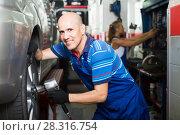 Купить «Man technician assembling new tires to car», фото № 28316754, снято 19 сентября 2019 г. (c) Яков Филимонов / Фотобанк Лори