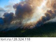 Купить «Лес горит, вид сверху», фото № 28324118, снято 12 июля 2007 г. (c) Владимир Мельников / Фотобанк Лори