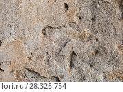 Купить «surface of ancient wall of natural stone», фото № 28325754, снято 24 октября 2017 г. (c) Татьяна Яцевич / Фотобанк Лори