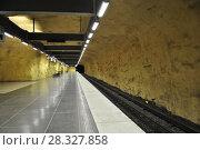 Купить «Стокгольмский метрополитен», фото № 28327858, снято 3 февраля 2012 г. (c) Яковлев Сергей / Фотобанк Лори