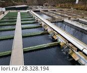 Купить «Tanks outdoors of fish farm», фото № 28328194, снято 4 февраля 2018 г. (c) Яков Филимонов / Фотобанк Лори