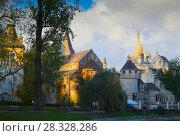 Купить «Vajdahunyad Castle, Budapest», фото № 28328286, снято 30 октября 2017 г. (c) Яков Филимонов / Фотобанк Лори