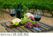 Купить «Red wine with cheese, bread and grapes», фото № 28328362, снято 25 мая 2019 г. (c) Яков Филимонов / Фотобанк Лори