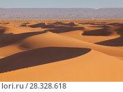 Arabian Sahara dunes in Morocco (2018 год). Стоковое фото, фотограф Кирилл Трифонов / Фотобанк Лори