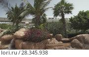 Waterfall at the entrance to the aquapark Aquaventure in Dubai stock footage video (2018 год). Редакционное видео, видеограф Юлия Машкова / Фотобанк Лори