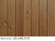 Купить «Деревянная текстура дощатого струганного покрытия», фото № 28346510, снято 16 апреля 2018 г. (c) Евгений Бусурманов / Фотобанк Лори