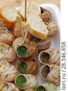 Купить «Close up portion of cooked escargot snails», фото № 28346858, снято 24 июня 2017 г. (c) Anton Eine / Фотобанк Лори