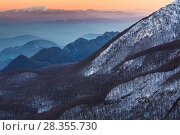 Купить «View of forested mountains, Central Apennines, Molise, Italy, December.», фото № 28355730, снято 29 мая 2020 г. (c) Nature Picture Library / Фотобанк Лори