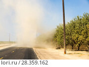 Купить «Almond (Prunus amygdalus) groves with dust storm during the 2011–17 California drought. Almonds take large amounts of water to grow and rely on irrigation...», фото № 28359162, снято 17 августа 2018 г. (c) Nature Picture Library / Фотобанк Лори