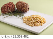 Купить «Pine nuts and pine cones», фото № 28359482, снято 14 апреля 2018 г. (c) Stockphoto / Фотобанк Лори