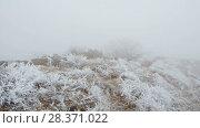 Купить «A strong wind blows to the top of the mountain. The rocks and grass are covered with hoarfrost.», видеоролик № 28371022, снято 27 марта 2018 г. (c) Андрей Радченко / Фотобанк Лори