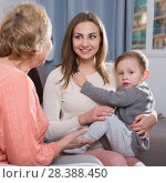Купить «Two adult female are talking about upbringing kid», фото № 28388450, снято 15 февраля 2018 г. (c) Яков Филимонов / Фотобанк Лори