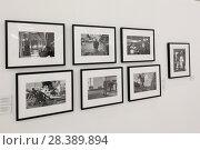 Купить «Москва, Фотобиеннале 2018 в Манеже», эксклюзивное фото № 28389894, снято 2 мая 2018 г. (c) Дмитрий Неумоин / Фотобанк Лори